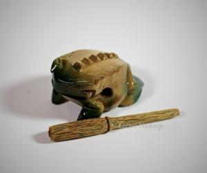 Extra Small Frog