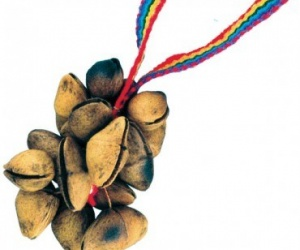 Cha-cha nuts