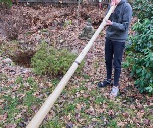 Didgeridoo Hibiscus wood 2 part