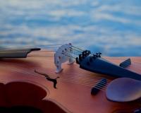 Spherical violins