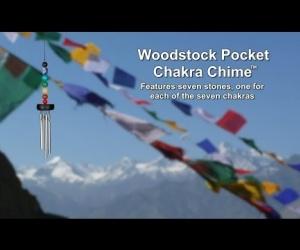 Zvonkohra Pocket